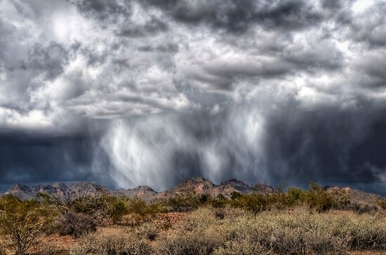 Snow Flurry in the Desert by Saija  Lehtonen