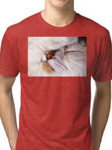 Fur Ball Tri-blend T-Shirt