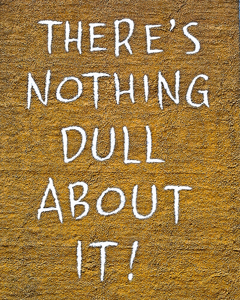 There's Nothing Dull About It by Steve Madsen