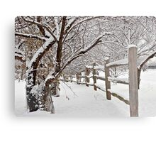 Winter Scene Metal Print