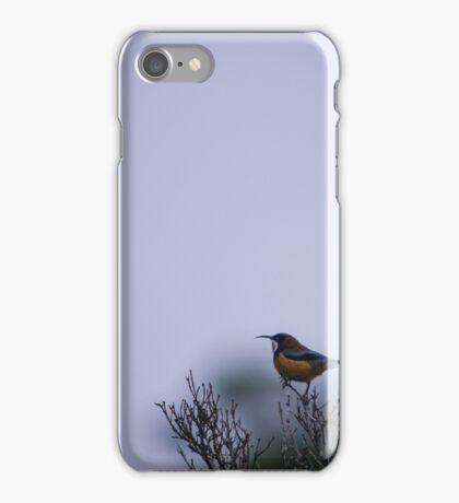 Eastern Spine Bill iPhone Case/Skin