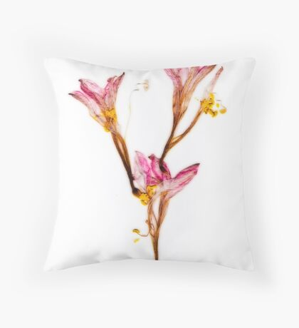 Amaryllis Fade Throw Pillow