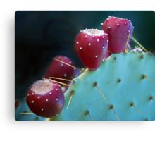 Fruitful Desert Canvas Print