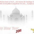 WISH YOU HAPPY NEW YEAR 2011 by RajeevKashyap
