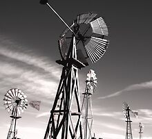 """Windmills Noir""  by waddleudo"