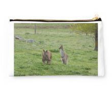 'JOEY PUT YOUR TAIL IN!' Dad & Floe in the Paddock. 'Arilka' Studio Pouch