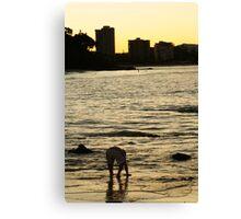 Dusk Paddle Canvas Print