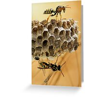 Yellow Jackets At Work Greeting Card