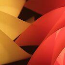 Pinwheels by Elspeth  McClanahan