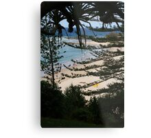 Norfolk Pines Metal Print