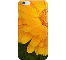 A touch of warmth iPhone Case/Skin