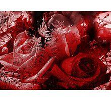 Frozen Roses Photographic Print