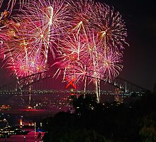 Sydney #2   New Years Eve 2010   Fireworks 9pm by Bill Fonseca