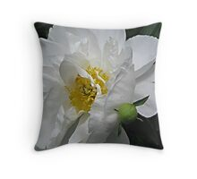 Peony of Summer Throw Pillow