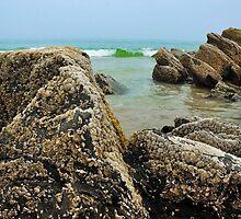We belong to the sea..... by Poete100