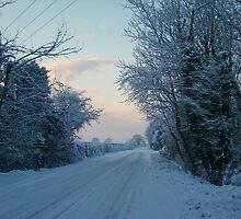 Winter Road by Michaela1991