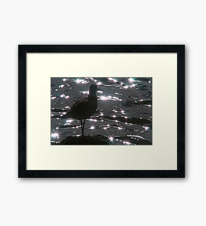 Willett Silhouette Framed Print