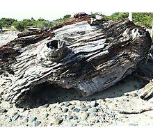 BEACH LANDSCAPES 1 Photographic Print