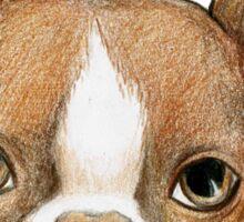 Brown Boston Terrier Sticker