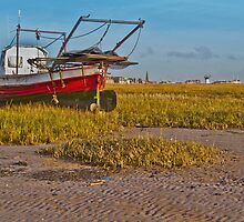 Red Boat on Beach by Peter Stone