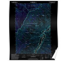 USGS Topo Map Oregon Temperance Creek 281770 1995 24000 Inverted Poster
