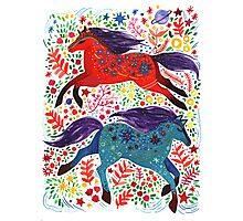 A Horse of Red and Blue Photographic Print