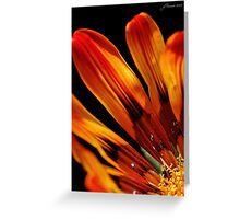 Fire and Light Greeting Card