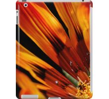 Fire and Light iPad Case/Skin