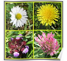 Wildflowers Collage Poster