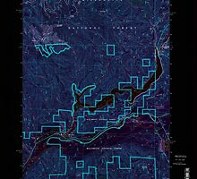 USGS Topo Map Oregon Blue River 279075 1997 24000 Inverted by wetdryvac