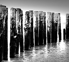 Beach Posts - West Wittering Beach by James Price