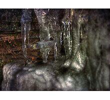 The Ice Shelf Photographic Print