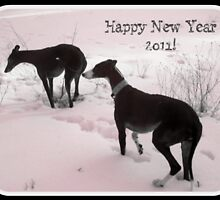 Happy New Year 2011 by homesick