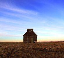 evening on the plains by Karen  Rubeiz
