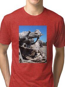 BEACH LANDSCAPES 2 Tri-blend T-Shirt