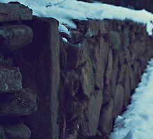 Snowy Wall by Angela Stansell