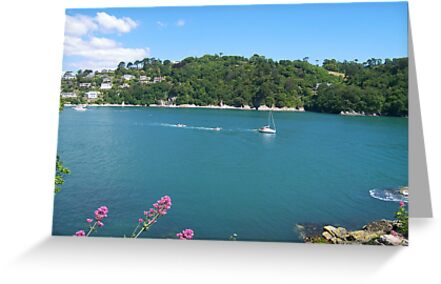 The Dart Estuary by ColinBoylett