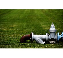 Lawn Order Photographic Print