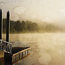 Manning River at Wingham Brush by Steve  Woodman