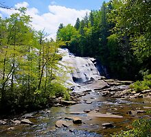 High Falls - Dupont Forest by Bill Wetmore