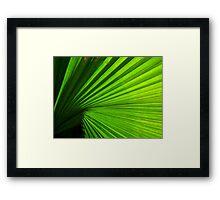 green rays Framed Print
