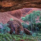 Looking Out from a Cave on Uluru by Pauline Tims