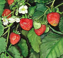 Strawberries - Fresh and Ready to Harvest by clotheslineart