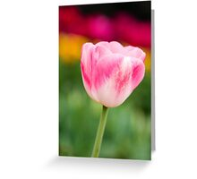 Floral 18 Greeting Card