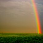 August Rainbow by Chris Pultz