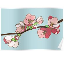 Pink on Blue Blossoms Poster