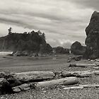 Ruby Beach - Oympic Peninsula Washington  ~ Black &amp; White by Lucinda Walter