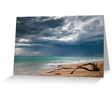 Weathered - Portsea, Victoria Greeting Card