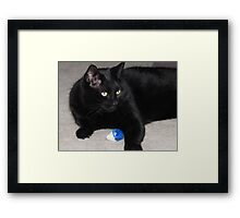 """Guarding The """"Kill"""" FEATURED PHOTO Framed Print"""
