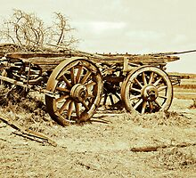Cart From Days Gone By - Country South Australia by Ginter